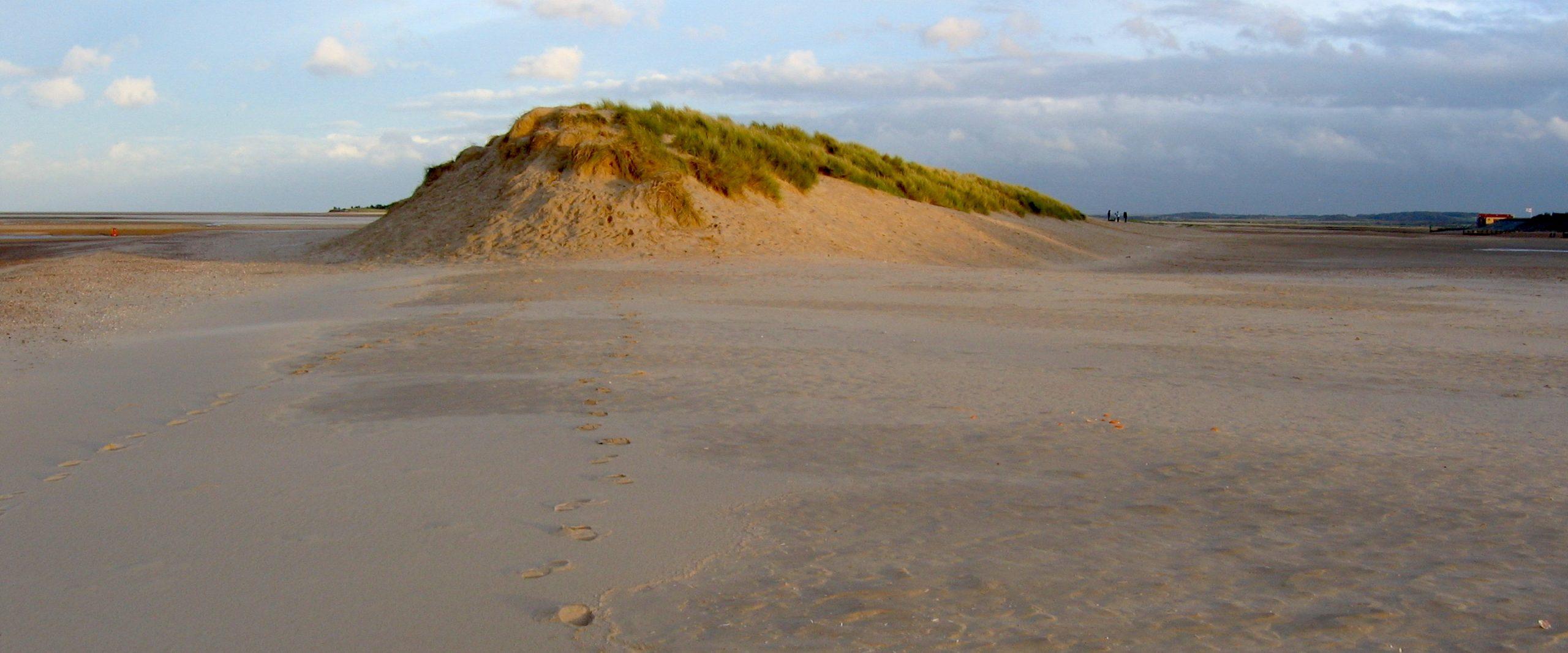 Sanddune, Norfolk